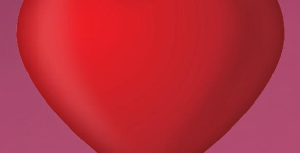 rosa rio (dia dos namorados)